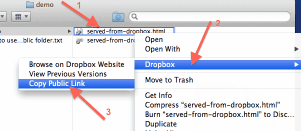 dropbox-public-folder-html-file-copy-public-link