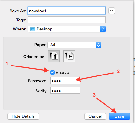 mac-preview-save-as-expanded-imput-box