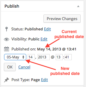 wordpres-publish-data-edit-screen
