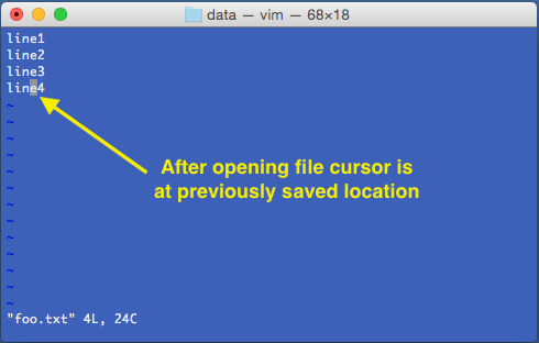 vi-file-open-at-previous-location